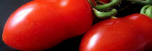 Le vitamine che migliorano una potenzialità di uomini