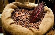 Cacao per non invecchiare